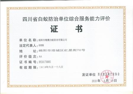 A级综合能力证书