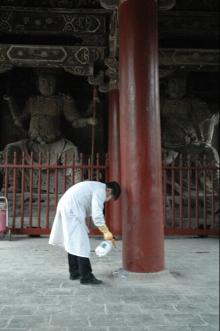 古建筑柱子白蚁预防